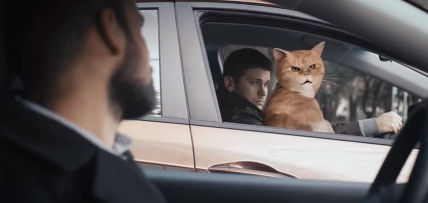 Реклама Hyundai про кота