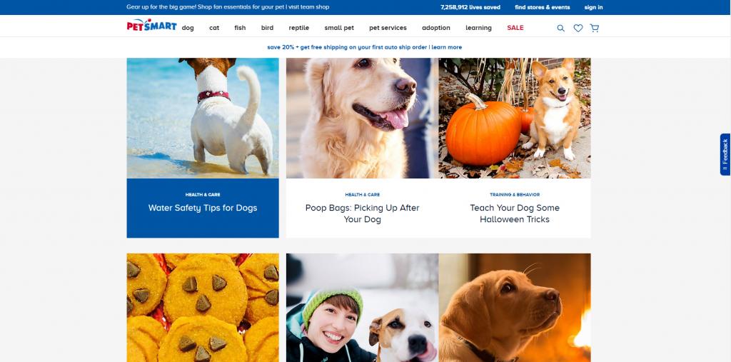 На сайте PetSmart можно найти уйму полезной информации по уходу за животными и даже, как провести со своей собакой Хэллоуин.