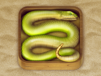 https://dribbble.com/shots/792957-Snake-iOS-Icon